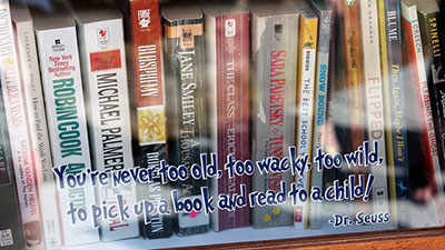 books in the little library